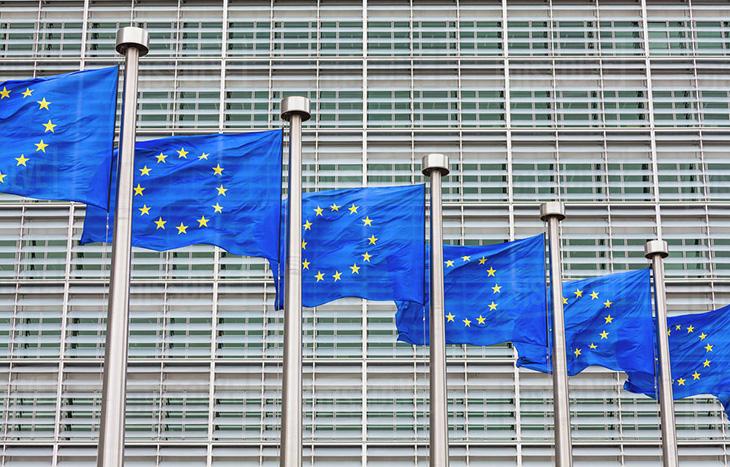 """Европейската комисия назначи нов генерален директор на ГД """"Енергетика""""."""