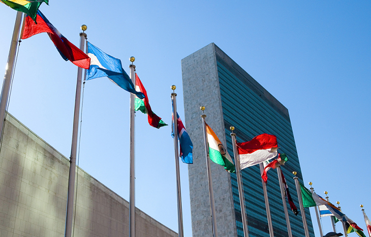 The UN expects new plans to combat climate change.